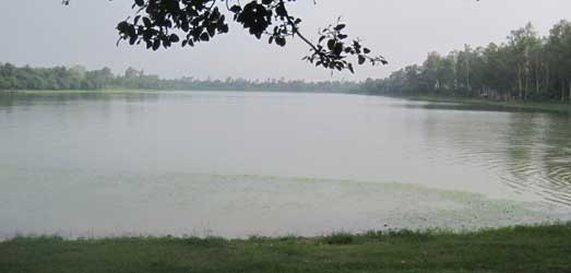 Ramsagar National Park lake picture