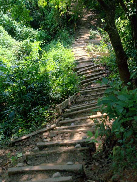 Stairs of Eco Park Sitakunda