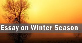 Essay on Winter Season