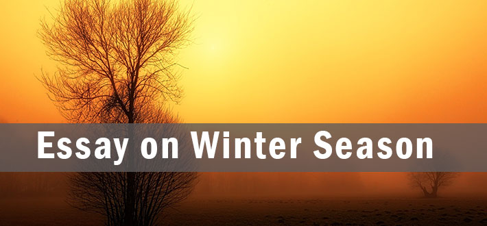 Essay on Winter Season, Paragraph and Composition | Ontaheen