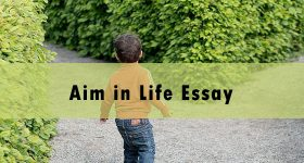 aim in life essay