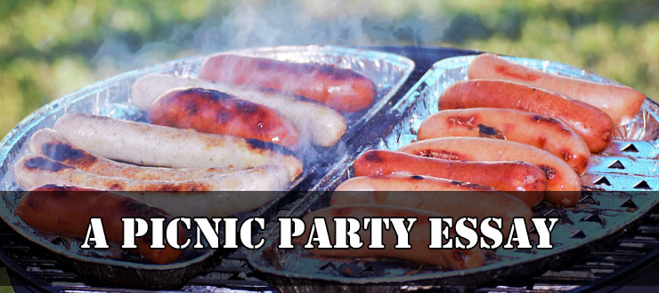 A Picnic Party essay