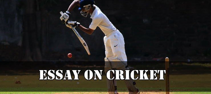 Essay On Cricket