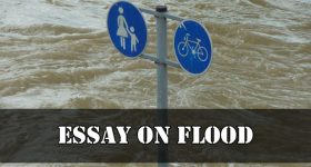 Essay On Flood