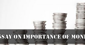 Essay On Importance Of Money