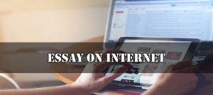 Essay On Internet