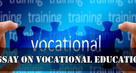 Essay on Vocational Education