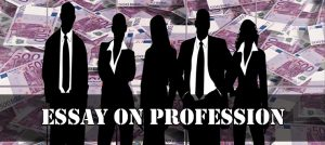 Essay on Profession