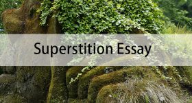 Superstition Essay
