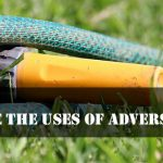 Sweet Are The Uses Of Adversity Essay