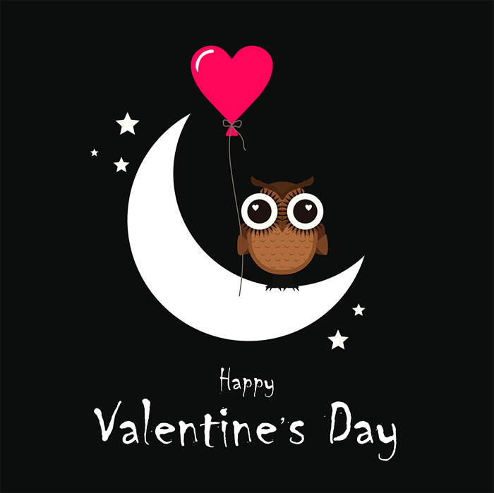 happy valentine day picture
