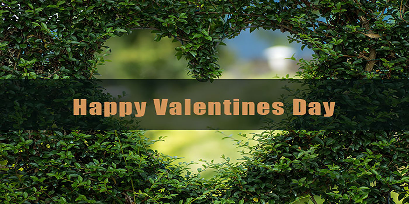Happy Valentines Day 2019 Images, Messages, Quotes